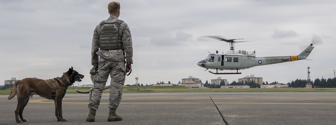 Staff Sgt. Cody Nickell, 374th Security Forces Squadron military working dog handler, watches with Topa, 374 SFS MWD, as a UH-1N helicopter takes off during a 459th Airlift Squadron MWD familiarization flight July 26, 2018, at Yokota Air Base, Japan. The 374 SFS MWD section train regularly with their MWD's to ensure the handlers and dogs are ready for all the various situations they may encounter during any given mission.